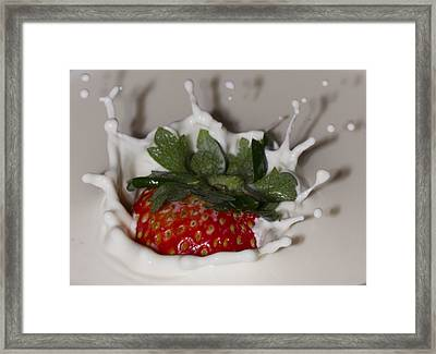 Framed Print featuring the photograph Strawberry And Cream by Cathy Donohoue