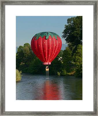 Strawberry Dripped Framed Print by Marie Neder