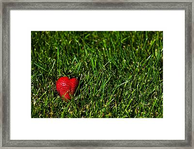 Strawberry Field Framed Print
