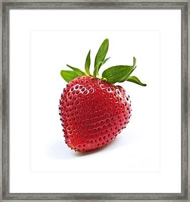 Strawberry On White Background Framed Print by Elena Elisseeva