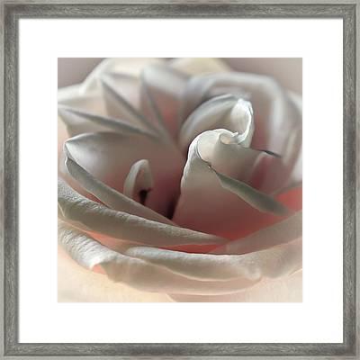 Strawberry Pastry Framed Print by Darlene Kwiatkowski