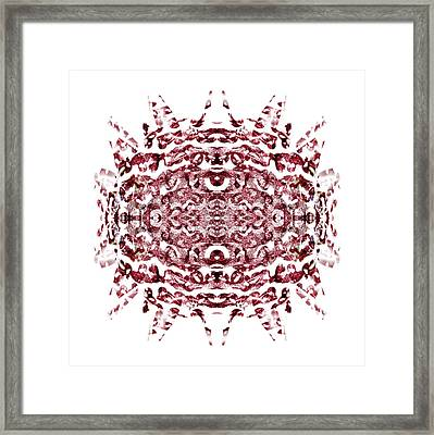 Strawberry Red Abstract Framed Print by Frank Tschakert