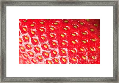Strawberry Texture Framed Print by Sharon Dominick