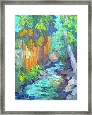 Stream At Indian Canyon Framed Print by Diane McClary
