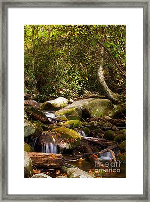 Stream At Roaring Fork Framed Print by Lena Auxier