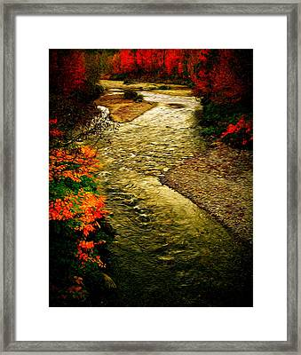 Framed Print featuring the photograph Stream by Bill Howard