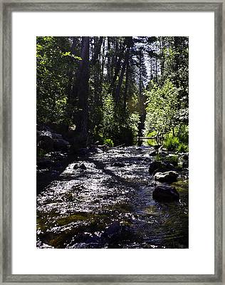 Framed Print featuring the photograph Stream by Brian Williamson