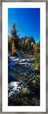 Stream Flowing In A Forest, Mount Framed Print by Panoramic Images