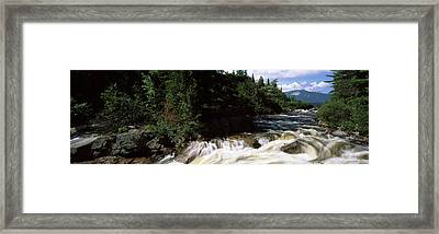 Stream Flowing Through A Forest, Little Framed Print by Panoramic Images