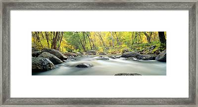 Stream In Cottonwood Canyon, Sedona Framed Print by Panoramic Images
