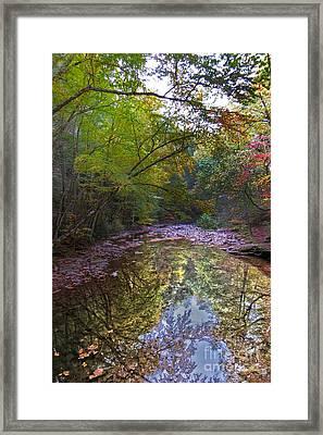 Trough Creek Reflection Framed Print