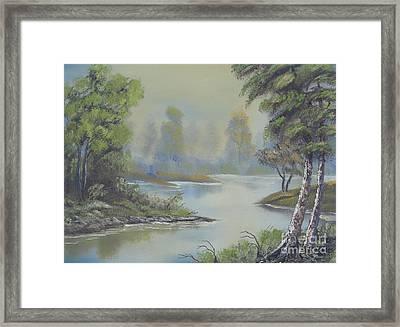 Stream Through The Woods Framed Print