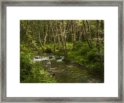 Stream Trout Fishing Framed Print by Jean Noren
