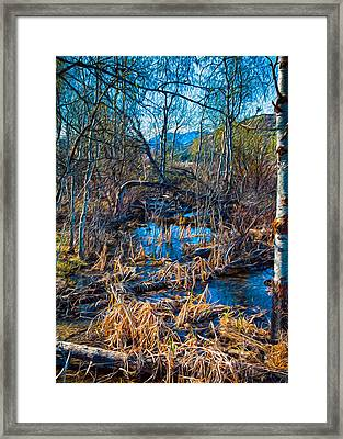 Streaming Beauty Framed Print by Omaste Witkowski