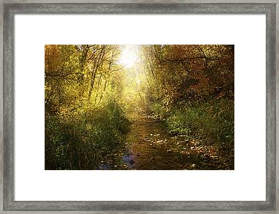 Streams Of Light Framed Print