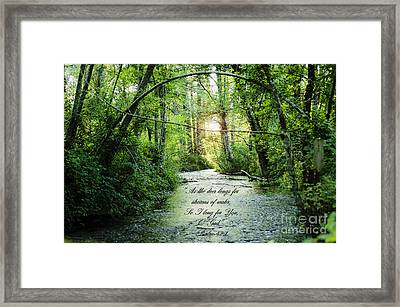 Streams Of Water Framed Print