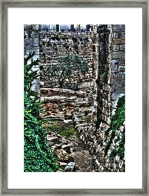 Framed Print featuring the photograph Street In Jerusalem by Doc Braham