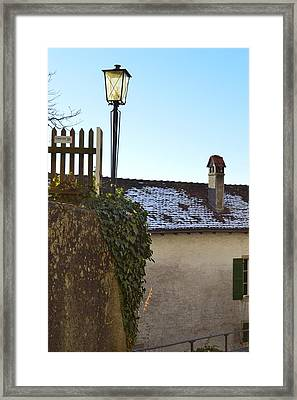 Framed Print featuring the photograph Street Lamp At The Castle  by Felicia Tica