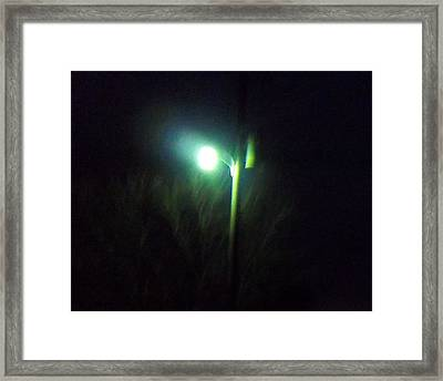 Street Light Framed Print by Rosalie Klidies
