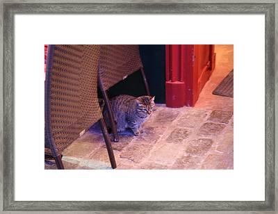 Street Scenes - Paris France - 01138 Framed Print