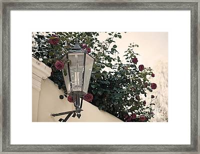 Streetlight Surrounded By Roses Framed Print by Aiolos Greek Collections