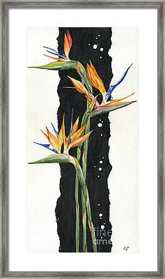 Strelitzia - Bird Of Paradise 11 Framed Print by Elena Yakubovich