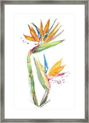 Strelitzia - Bird Of Paradise 13 Elena Yakubovich Framed Print by Elena Yakubovich