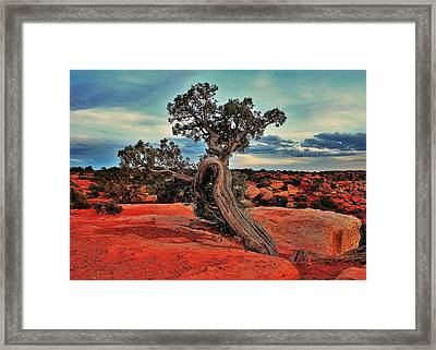 Strength Framed Print by Benjamin Yeager