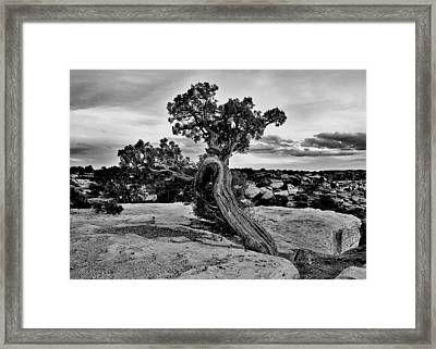 Strength Black And White Framed Print by Benjamin Yeager