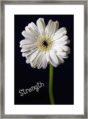 Strength Framed Print by Kim Andelkovic
