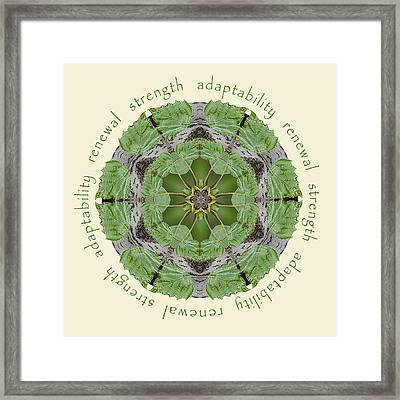 Strength Mandala 1 Framed Print