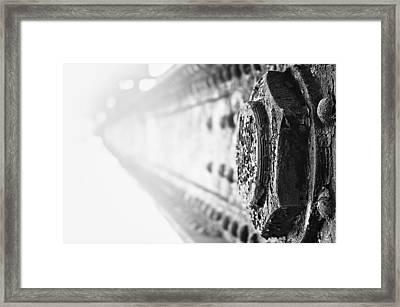 Strength Framed Print by Matthew Blum