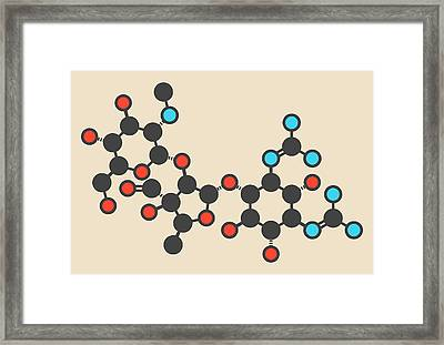 Streptomycin Antibiotic Molecule Framed Print by Molekuul
