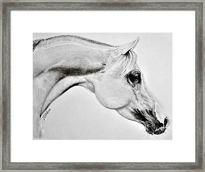 Stretching Framed Print by Janet Moss