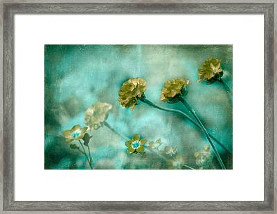 Stretching Toward Morning Framed Print