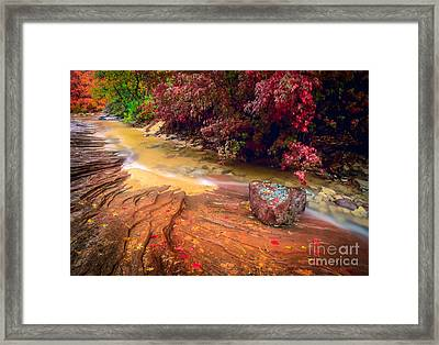 Striated Creek Framed Print by Inge Johnsson