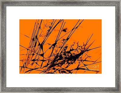 Strike Out Orange And Black Abstract Framed Print by Natalie Kinnear