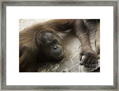String Theory I Framed Print