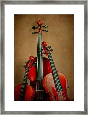 Stringed Trio Framed Print by David and Carol Kelly