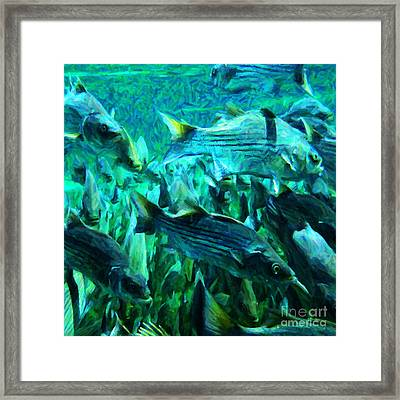 Striped Bass - Painterly V1 - Square Framed Print by Wingsdomain Art and Photography