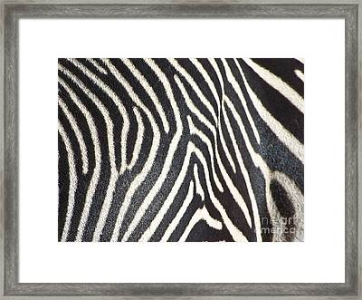 Stripes And Ripples Framed Print by Kathy McClure