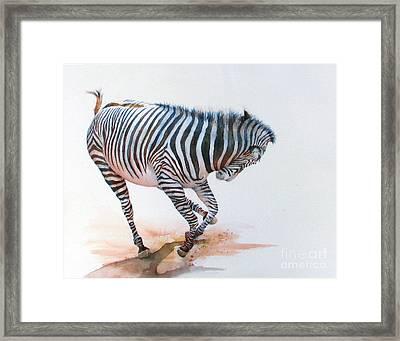 Stripes IIi Framed Print