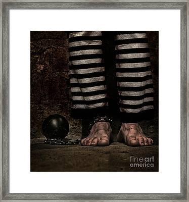 Stripes Framed Print