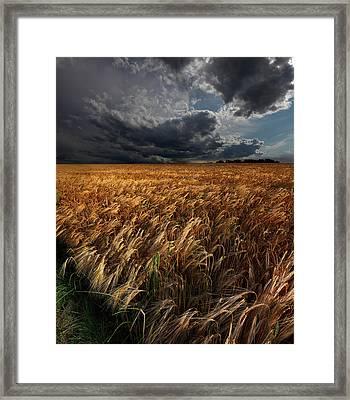 Strohgaeu Framed Print