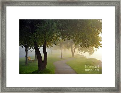 Stroll In The Fog Framed Print by Terri Gostola