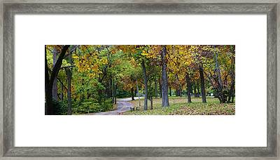 Stroll Through The Park Framed Print