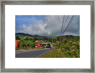 Strolling Around Monteverde In Costa Rica Framed Print by Andres Leon
