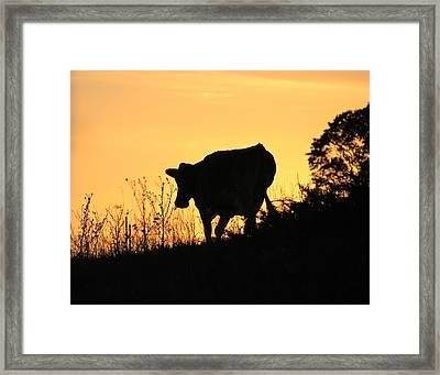 Framed Print featuring the photograph Strolling Into The Sunset by Penny Meyers
