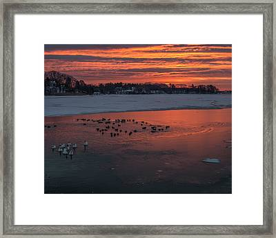 Stroudwater Crossing Sunrise Framed Print by Stroudwater Falls Photography