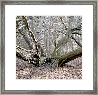 Struck By Lightning - Grafical Framed Print by Tine Nordbred
